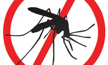 Leaders urged to renew commitment to a malaria-free Africa