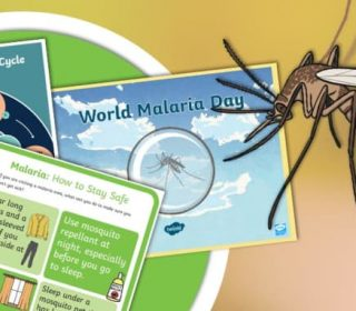 World Malaria Day 2021- Ending Malaria is Within Reach